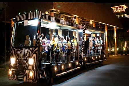 新加坡夜间野生动物园门票 游览车成人/21:15时段