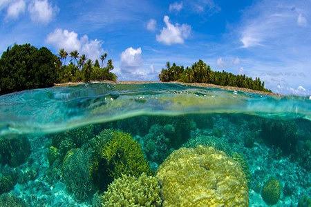 泰国 普吉岛皇帝岛 珊瑚岛浮潜nikorn快艇一日游(一日游 海底漫步)