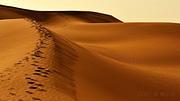 乌鲁木齐+阜康天山天池+吐鲁番+鄯善5日4晚自由行(5钻)·乌市周边精选玩乐 感受冰与火的融合 包车游  双飞