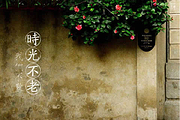 悠闲厦门丨南普陀寺+鼓浪屿+曾厝垵+环岛路+厦门大学丨全程无购物✈享早去晚回