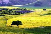 魅力承德避暑山庄+坝上草原两晚三天跟团轻松游