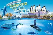 广州珠海双长隆☀2晚熊猫酒店+2晚企鹅酒店☀大马戏+二日野生动物园+海洋王国