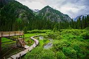 白马王朗一价全包套餐1晚平武白马王朗生态酒店,游白马王朗自然景区