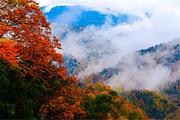 秋摄光雾山5日秋天的童话,一个你不知道的世外桃源丨光雾山+十八月潭+黎坪