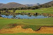非洲礼赞-南非静谧酒乡大洋公路8日 太阳城&1晚特色酒店&比林斯堡野生动物园