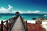 特惠微导游专线、蜈支洲岛一日游、上岛自己玩、三亚湾大东海亚龙湾可接送