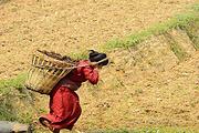 精品小团!尼泊尔8日游4星酒店✔飞越珠峰 ✔纯玩无购物 ✔全国联运 ✔