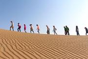 纯玩团☞腾格里沙漠+通湖草原两日游! 1晚帐篷✔篝火晚会✔沙漠冲浪