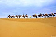 纵享沙漠 鄂尔多斯出发 响沙湾一日游 赠送旅游意外险