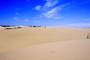 沙漠+温泉库伦银沙湾+阜新宝地斯帕温泉2日游