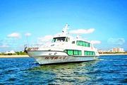 湛江特呈岛、红嘴鸥、湖光岩、菠萝的海3日火车深度游纯玩亲子