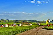 呼伦贝尔草原深度4日+白桦林+呼伦湖+边防风景线+满洲里+哈达接机+异域风情