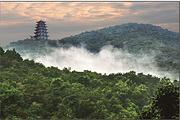 春节-临沧、景谷、普洱8日自驾游