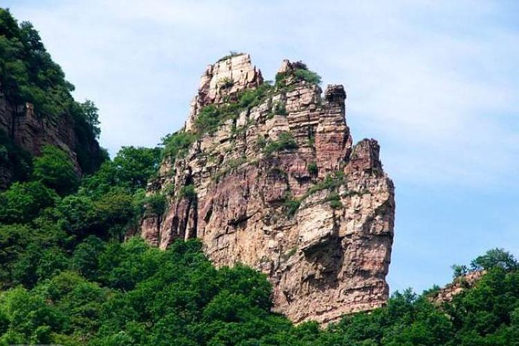 五指山热带雨林风景区还集中了热带山地雨林和热带沟谷雨林的典型景观
