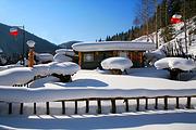 哈尔滨亚布力雪乡3日深度纯玩游 住双人暖炕 滑雪4小时 冰雪画廊 梦幻家园