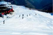 辽宁滑雪温泉:营口虹溪谷滑雪全天+兴辰温泉+海鲜自助纯玩2日 大连起止