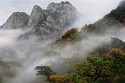 安徽岳西明堂山景区 登高望远 体验高空玻璃栈道 一日游 不负光阴