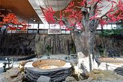 浪漫温泉,私汤小院北京益泉花园酒店私汤小院1晚+双早+私汤小院温泉泡池