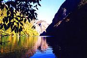 一天往返,品质养生游  随州养生大洪山  赏千年银杏树
