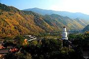 北京到山西旅游|太原、五台山、云冈石窟、悬空寺、去高回卧3日游