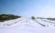 辽宁沈阳白清寨滑雪一日跟团游(含车、滑雪票、雪具、保险)