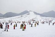 沈阳棋盘山滑雪一日游 含雪鞋 雪板 雪仗 冬季大促 直通车+景区门票