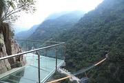 <纯玩>福州出发永泰天门山直通车一日游|往返大巴+天门山套票、门票+玻璃天桥