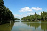 泰州赏红叶之旅住1晚姜堰康勃莱凤凰酒店+李中水上森林公园