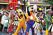 华东3市+迪士尼丨真纯玩+撩人美食+主题酒店丨忆江南水乡+杭州+上海+乌镇