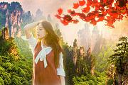金秋热卖 |张家界森林公园+黄龙洞+天门山+凤凰双飞6日|一价全含 赠晚会
