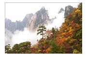 黄山旅游大概多少钱_杭州出发黄山旅游线路推荐_要多少钱【最低报价】价格