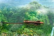 湖南郴州莽山森林温泉酒店2天1晚~泡原生态森林温泉~自行穿越莽山原始森林~