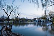 扬州瘦西湖+大明寺+何园+汉陵苑+东关街一日游 纯玩不进店