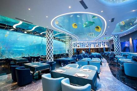 瑞德姆海底餐厅自助下午茶 地中海潜水 赠送其他海上项目