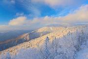 一起去看雾凇吧❉天池瀑布❉寒地温泉❉亚布力滑雪❉长白山北坡❉吉林双飞六日游
