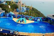 非凡暑假一起狂欢香港 香港④天③晚海洋公园/维多利亚港/贴心安排①天自由行