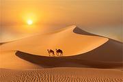 北京-内蒙古呼和浩特希拉穆仁草原+响沙湾沙漠+伊利蒙牛+博物馆双卧五日
