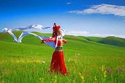 呼伦贝尔草原+中俄边境风光。看草原|走边防|登国门。赠送下马酒,祭敖包