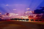 最美的季节遇见你--新疆、喀纳斯、五彩滩、魔鬼城、天池、吐鲁番双飞8日