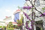 近韶山火车站韶山德盛宾馆,自选韶山大型实景演出《中国出了个毛泽东》