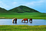 草原沙漠C线B--贡格尔大草原、玉龙沙湖、石阵、乌兰布统草原三日游