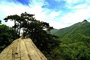 特价!天堂寨国家森林公园、白马大峡谷、飞龙峡奇幻漂流2日游
