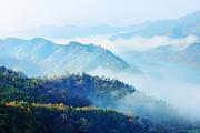 黄柏山狮子峰、五脑山杜鹃花二日游