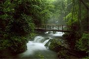 本溪绿石谷一日游 天然氧吧 避暑胜地 赠送旅游意外险