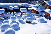 0购物0自费哈尔滨雪乡纯玩二日游雪地摩托+冰雪画廊+梦幻家园 赠保暖三件套