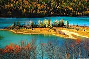 新疆旅游 北屯接送阿勒泰喀纳斯景区+禾木+五彩滩二日游!