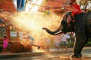 泰国清迈美旺大象营骑大象-喂水果-驾驶ATV车+美旺大象营+接送