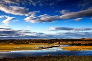 休闲超值|呼伦贝尔草原穿越5日|黄金牧场 最美白桦林 边防风景线+满洲里热卖