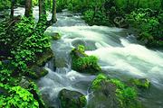 本溪绿石谷国家森林公园1日游 本溪奇观 天然氧吧