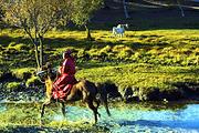 蓝天の白云|风吹草低现牛羊<木兰围场乌兰布统草原2日游>一起直达草原深处